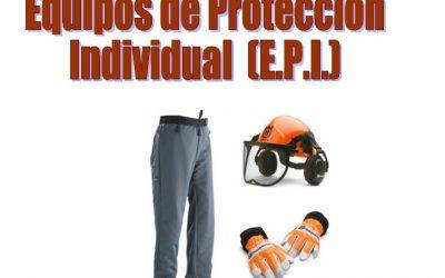 ¿Sabemos realmente qué necesitamos las empresas forestales sobre equipos de protección laboral?
