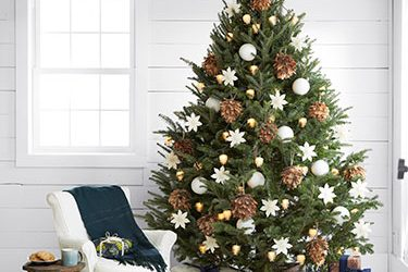 ¿Pino natural o artificial para estas Navidades?