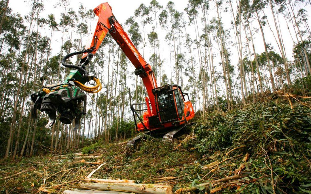 Ayudas para las inversiones en tecnologías forestales, transformación, movilización y comercialización de productos forestales 2017