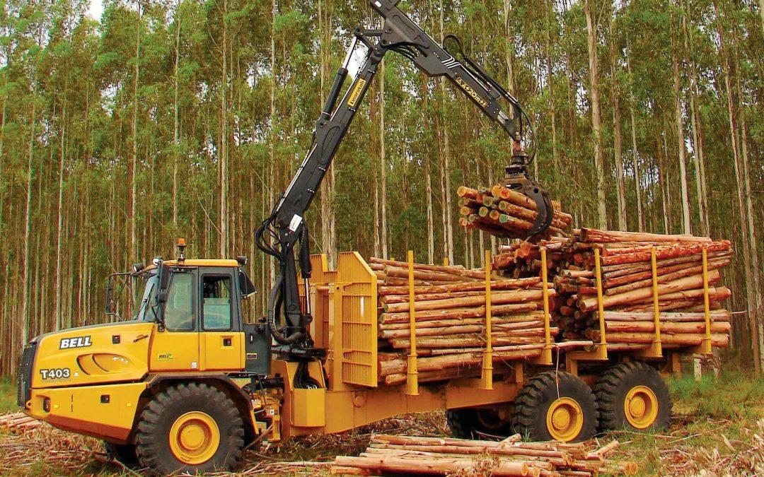 ADEMAN impulsa un programa de formación y empleo en Maquinista de Autocargador Forestal