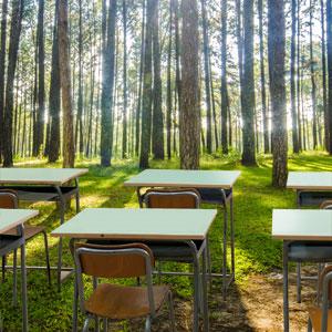 ADEMAN fomenta la Prevención de Riesgos Laborales en el sector forestal impulsando formación práctica