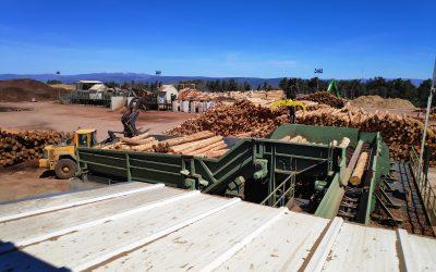 Visitamos Tableros Losán, una de las empresas más importantes del sector del tablero