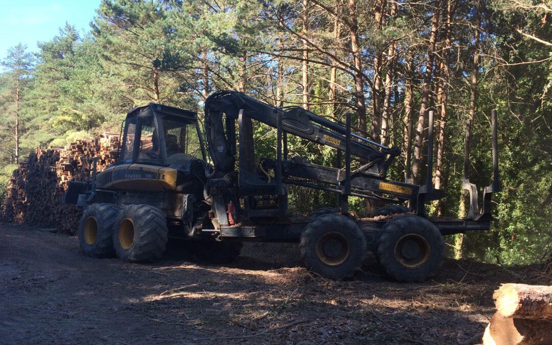 Ayudas para las inversiones en tecnologías forestales, transformación, movilización y comercialización de productos forestales año 2020