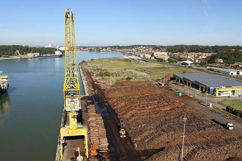 ADEMAN visita el puerto de Bayona, especializado en  importación y exportación de madera