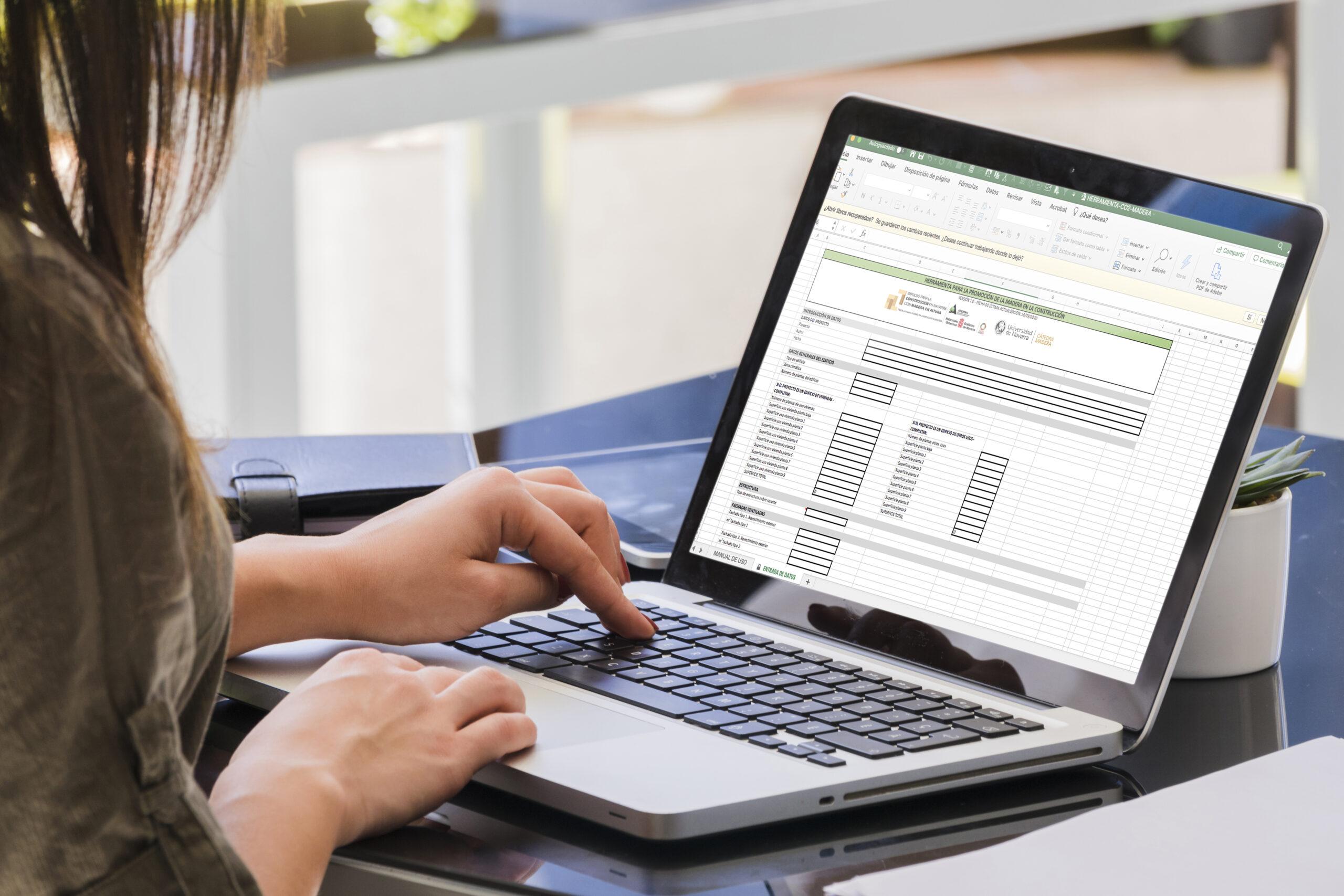 Herramienta de promoción de la madera en Navarra. Pulse sobre la imagen para descargar la herramienta (Excel)