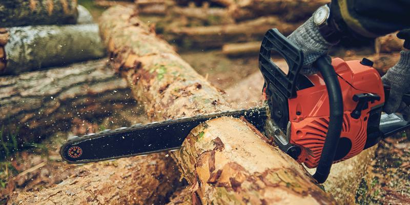 ADEMAN realiza un estudio para analizar los perfiles profesionales en el sector de la madera de Navarra