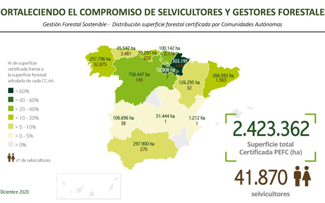 Navarra, la comunidad autónoma con mayor porcentaje de superficie forestal certificada